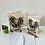 Thumbnail: Koala Bear Card Blank