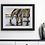 Thumbnail: Zebras Art Print