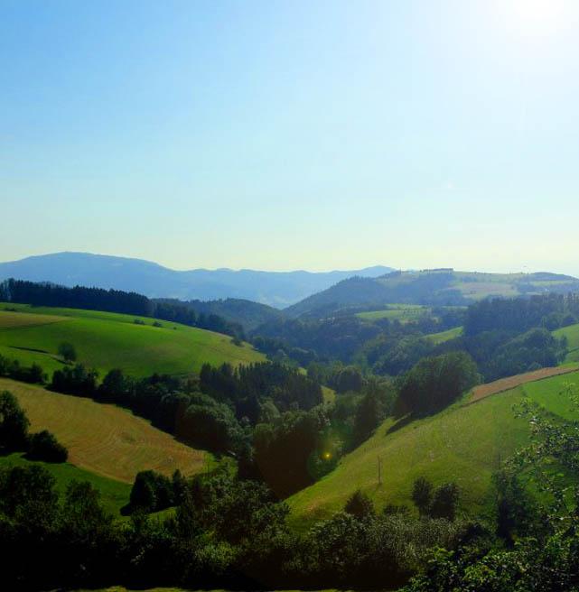 Schwarzwald aussicht