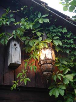 Licht und Vogelhaus
