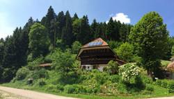 Wandelhaus Panorama