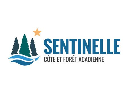Lancement du projet de Sentinelle de la côte et forêt acadienne