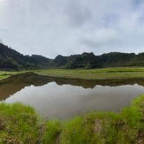松蘿湖照片12