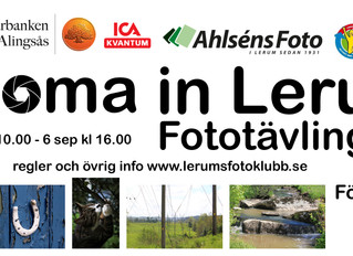 Zooma in Lerum