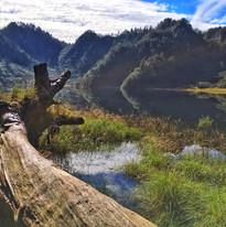 松蘿湖照片9