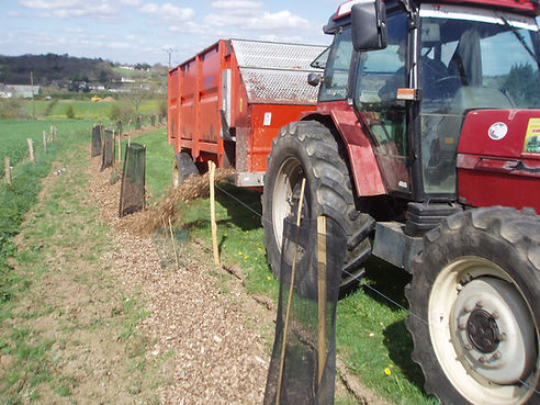 Paillage Horticole, BRF, replantation bocage