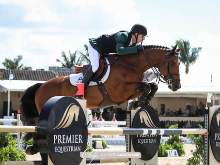 QBS Equestrian Partners with International Show Jumping Athlete Andrew Bourns To Campaign Sea Topblu