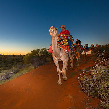 experiences-UluruCamelTours-frontshot-48