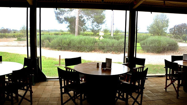 Angas Plains Wines looking out.jpg