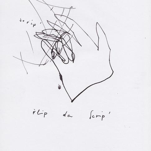 """""""Flip da Scrip'"""""""