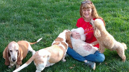 Asheville Family Dog Sitter Playing with Dogs