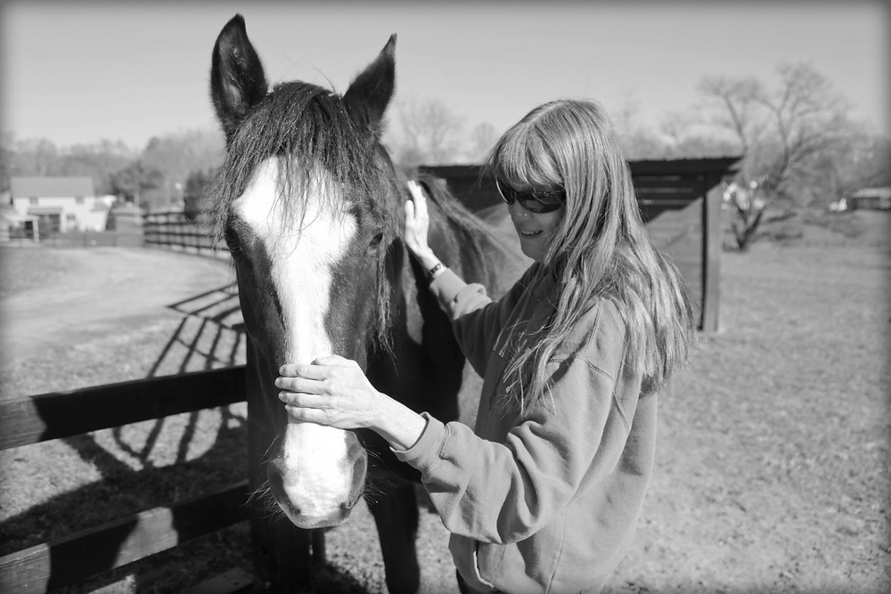 Horse and Pet Sitter
