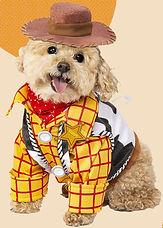 other dog.jpg