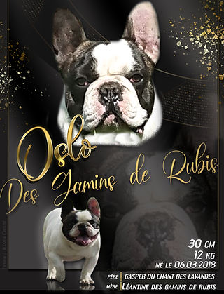 OSLO DES GAMINS DE RUBIS FINAL.jpg mod.1