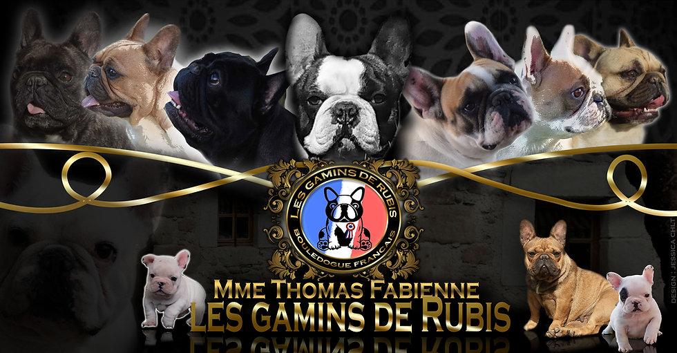 MONTAGE CHEPTEL LES GAMINS DE RUBIS.jpg
