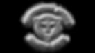 IAM Transparent Logo.png