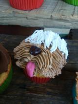 Pupcakes at the Dog Day Extravaganza