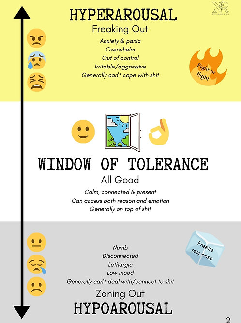 Guide To Feeling On Top Of Shit (Window of Tolerance)