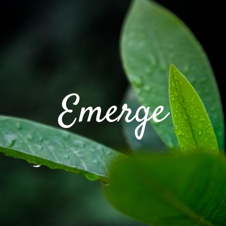 EMERGE: Celebrating work in progress
