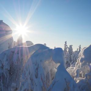 Winter Koli II