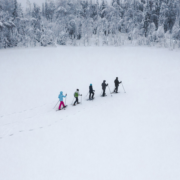 Snowshoeing II