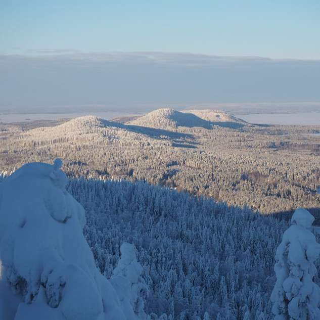 Winter Koli