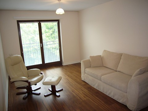 lounge 2 shrunk.jpg
