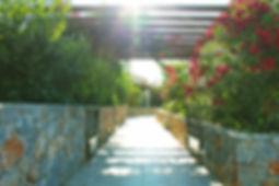 Souri Pathway 3 small.jpg