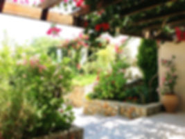 Souri Garden Small.jpg