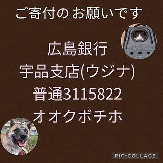 195845764_395391141656764_23449848656493