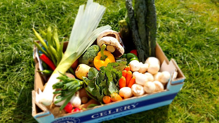Ring O Bells Hinton Fruit & Veg Box