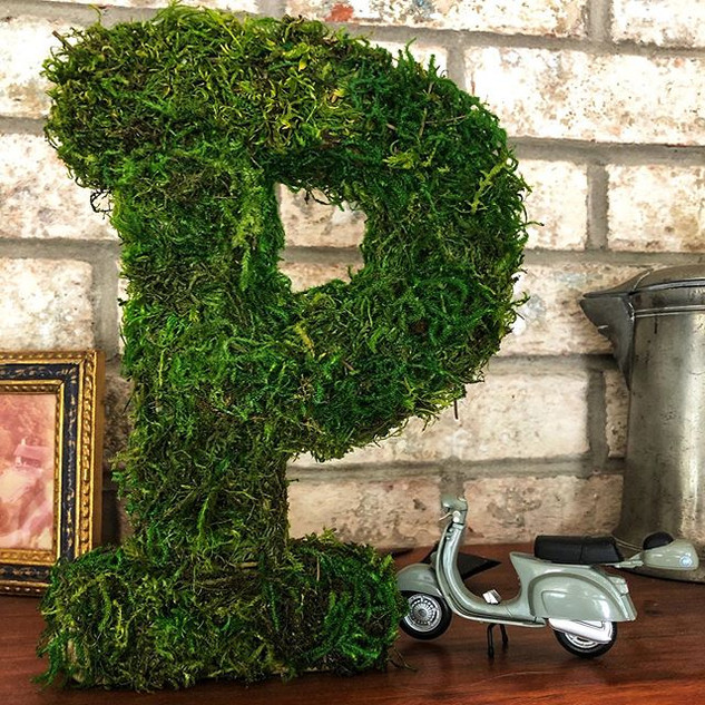 P is for Potted Plantscapes _#mosswall.j