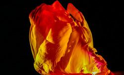 "Loïe Fuller's ""Fire Dance"""