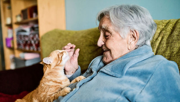 elderly_woman_cat_1600.jpg