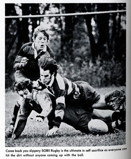 SURFC1977-1c.jpg