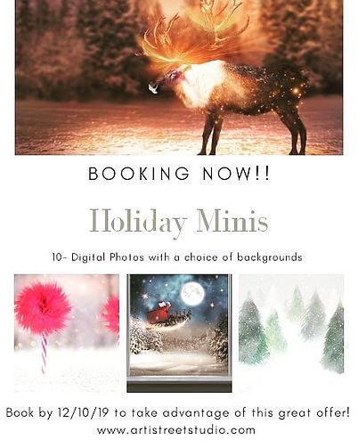 Christmas Mini Sessions.jpg