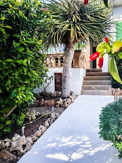 beachhouse mallorca, mallorca-beachhouse_Blume.jpg