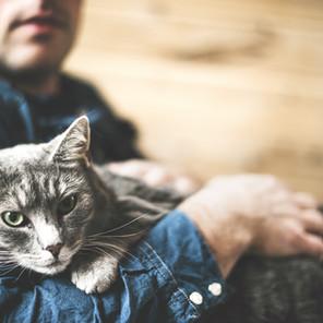 犬や猫は怖い存在? コリネバクテリウム・ウルセランス感染症