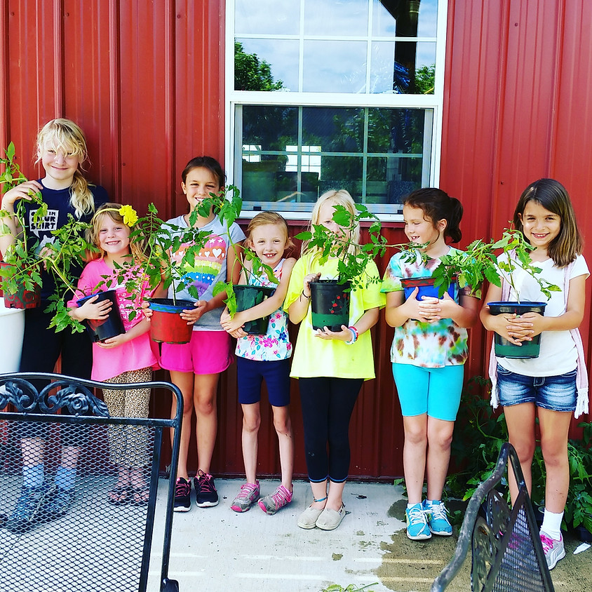 Kids Cookin' on the Farm Day Camp June Session