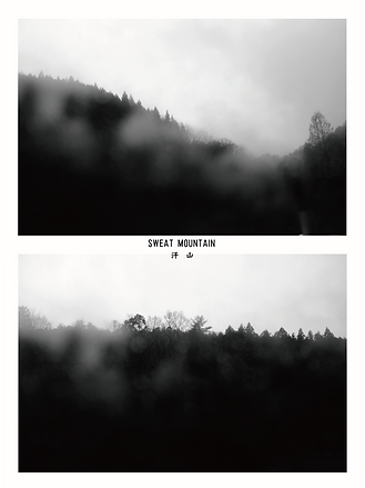カルロス_sweat mountain.png