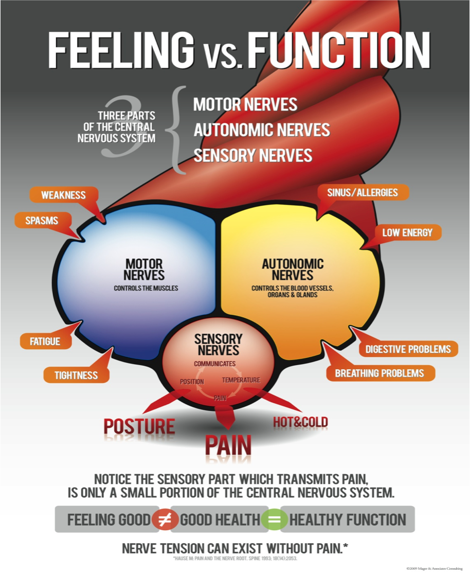 illustration of how a body is feeling vs functioning