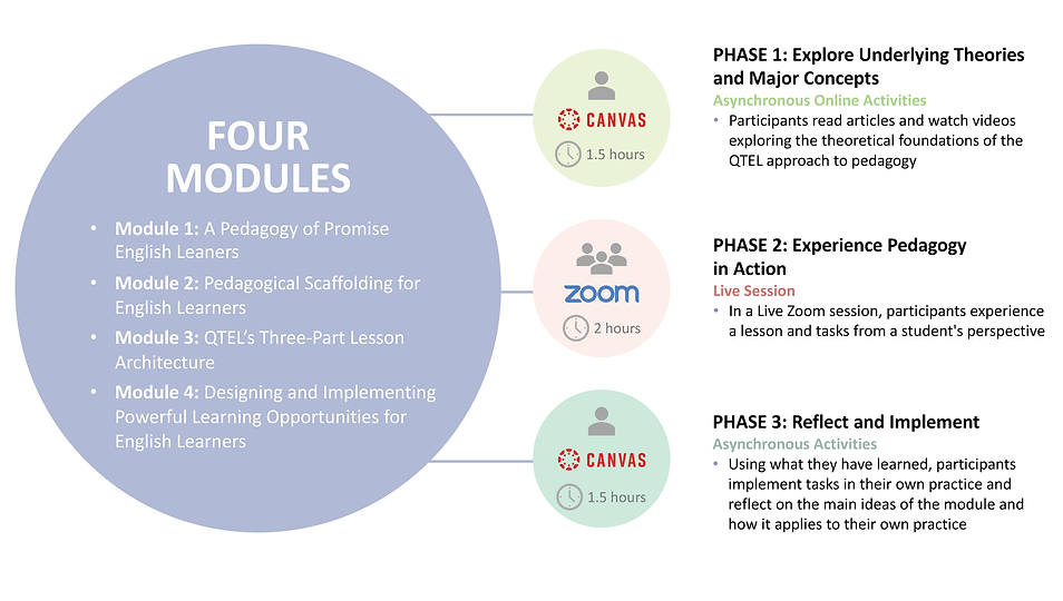 Pedagogy of Promise 4 Modules