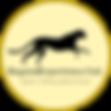 BeyondExperience Logo