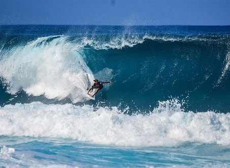 Insider's Guide to WAVE SEASON