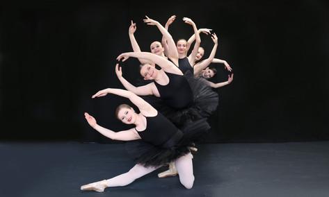 Black Swans_1.JPG
