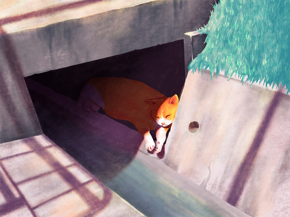 Cat Napping_190409_01.png