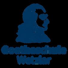 20210303_Goetheschule_v02.png