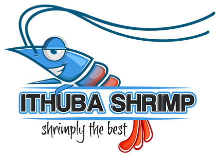 ithuba-Shrimp-farm.png