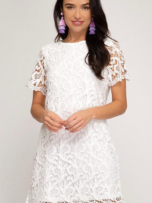 The white lace shift dress