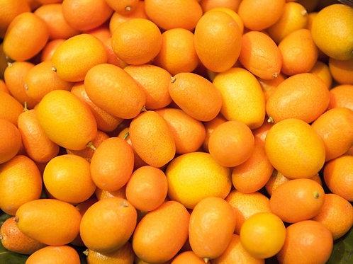 Kumquats (USA) (5 lb)